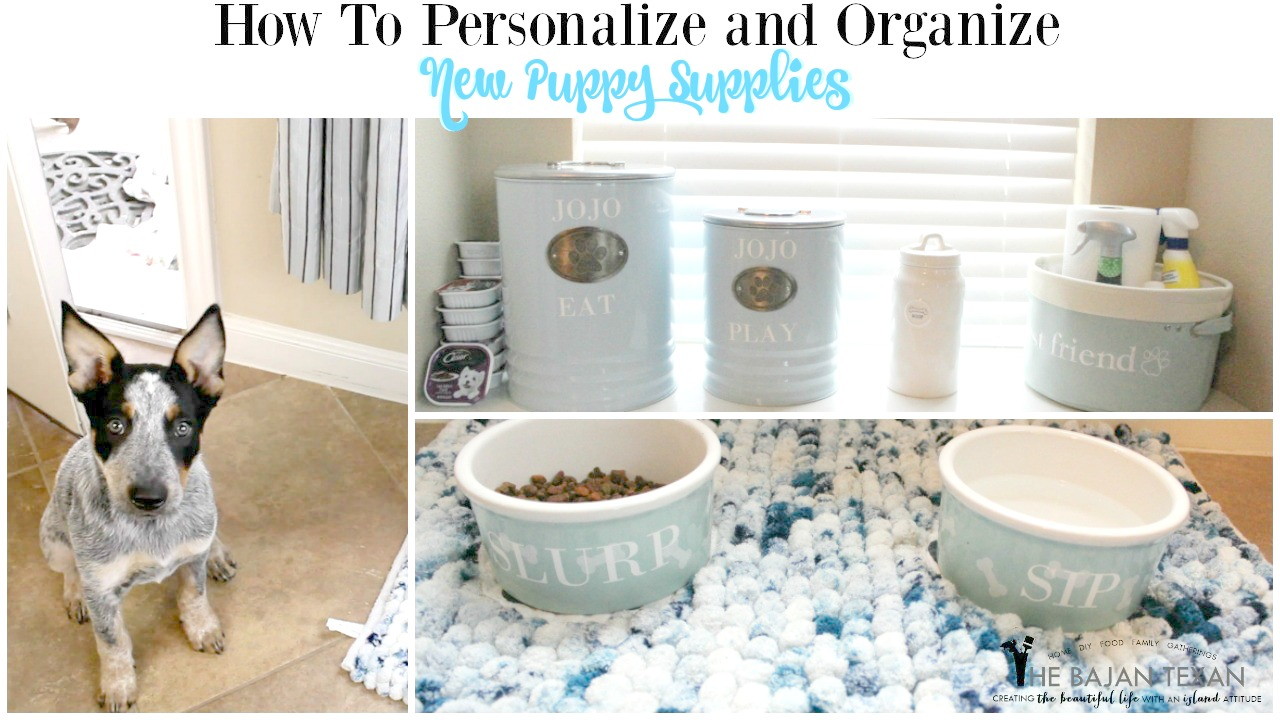 How To Personalize And Organize New Puppy Supplies The Bajan Texan